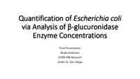 Quantification of Escherichia coli via analysis of β-glucuronidase enzyme concentrations