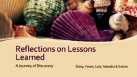 Reflections on lessons learned: a journey of discovery