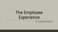 Consumerization of HR: the employee consumer style experience