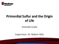 Primordial sulfur and the origin of life