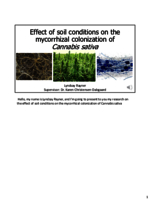 Effect of soil conditions on the mycorrhizal colonization of Cannabis sativa