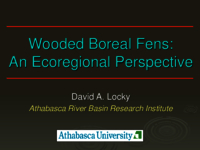 Plant communities and diversity in boreal wooded fens: an ecoregional perspective